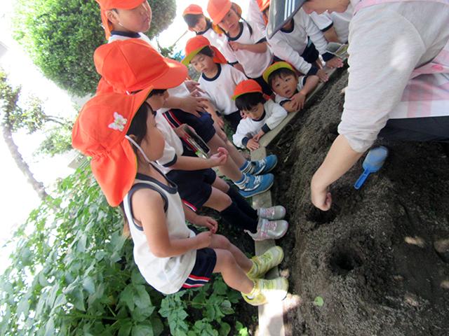 おじま幼稚園0514